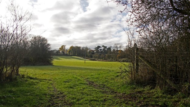 Worcestershire Wildlife Trust buys unprotected meadows