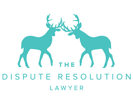 The Dispute Resolution Lawyer