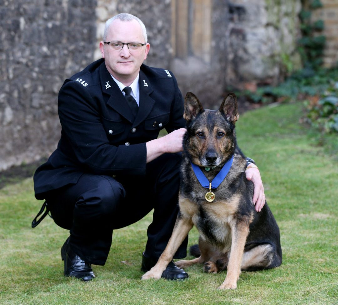 Worcester's MP Takes to the Front Bench to Support Service Animals