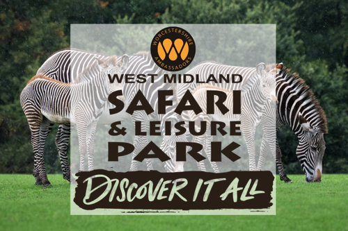 Worcestershire Ambassadors and West Midland Safari Park Support Families Fun Day Out